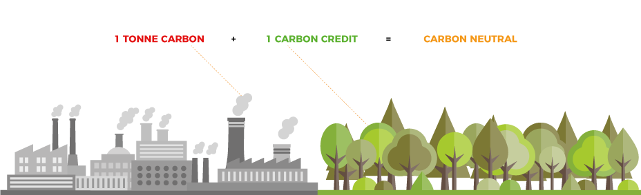 Infographic explaining the concept of carbon credits